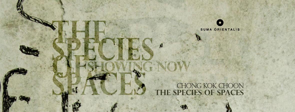 Chong Kok Choon: The Species of Spaces